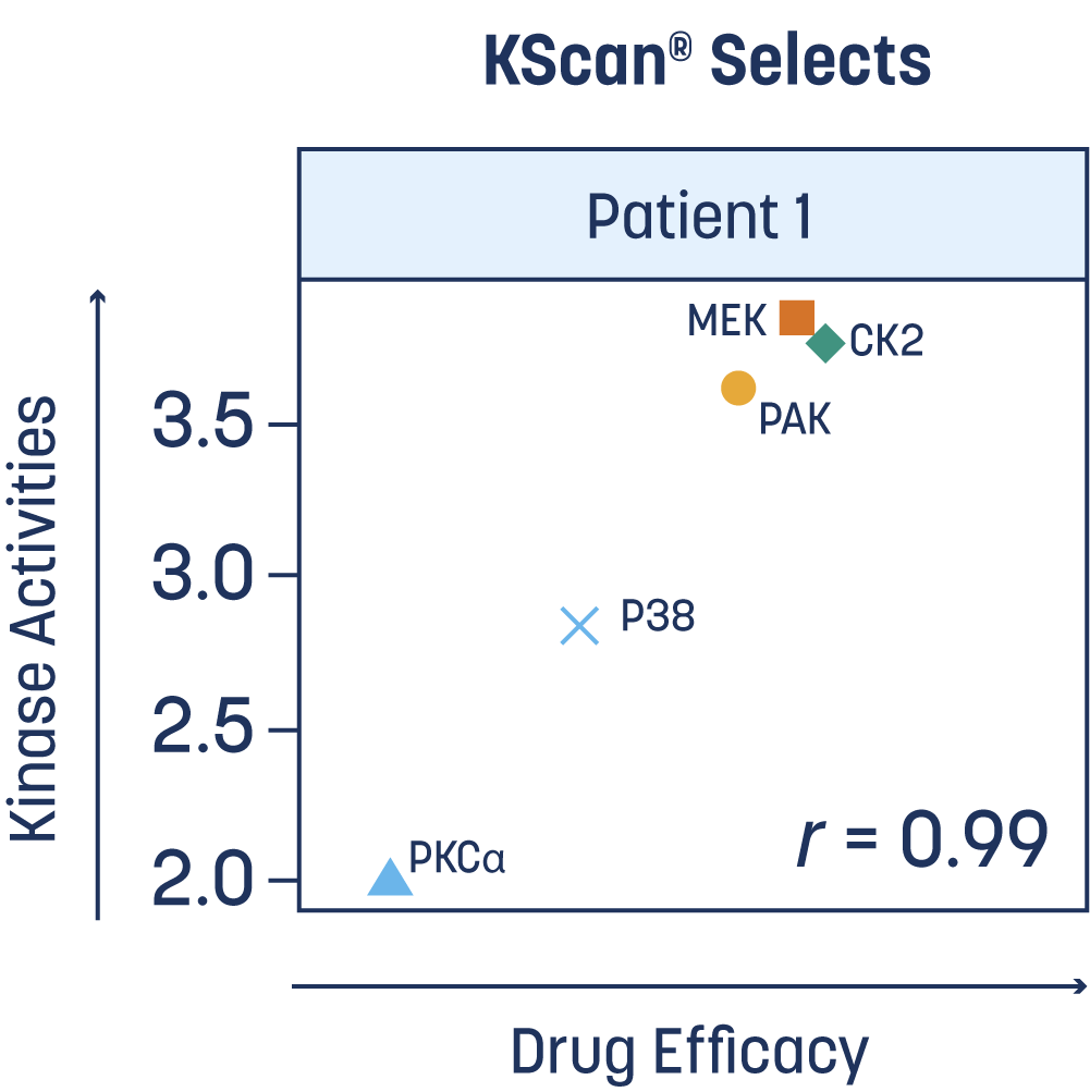 KScan lc/ms/ms diagram shwoing drug efficacy against kinase activities