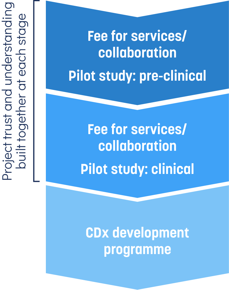 diagram showing the breakdown of our preclinical services